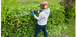 How to Use a Hedge Trimmer